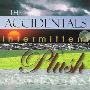 The Accidentals Intermittent Plush