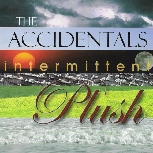 The Accidental Intermittent Plush